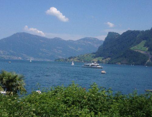 رقم قياسي مرتقب هذا العام سويسرا تشهد ارتفاعا في عدد ركاب السفن النهرية